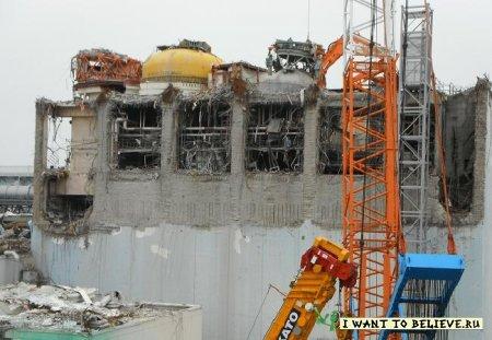 Что нового в зоне Чернобыля?