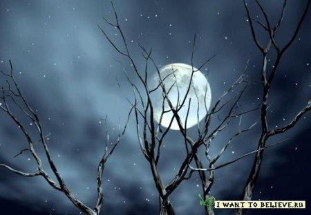Луна - великая загадка человечества