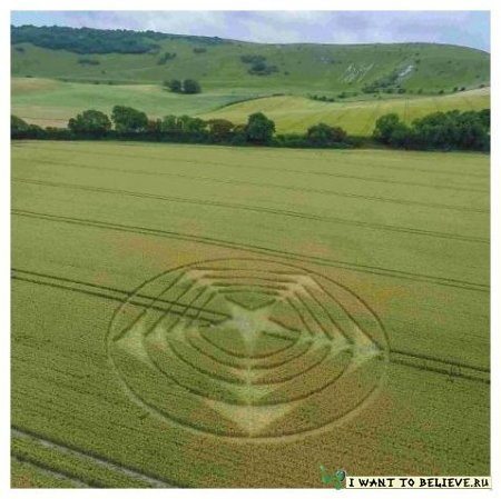Энтузиасты собрались, чтобы посмотреть новый таинственный «круг на полях» в Южной Англии